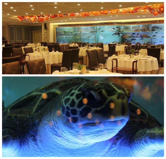 南海渔村珠江新城店圣诞-温馨套餐